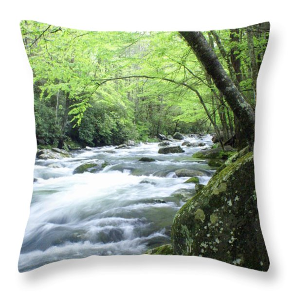 Middle Fork River Throw Pillow by Marty Koch