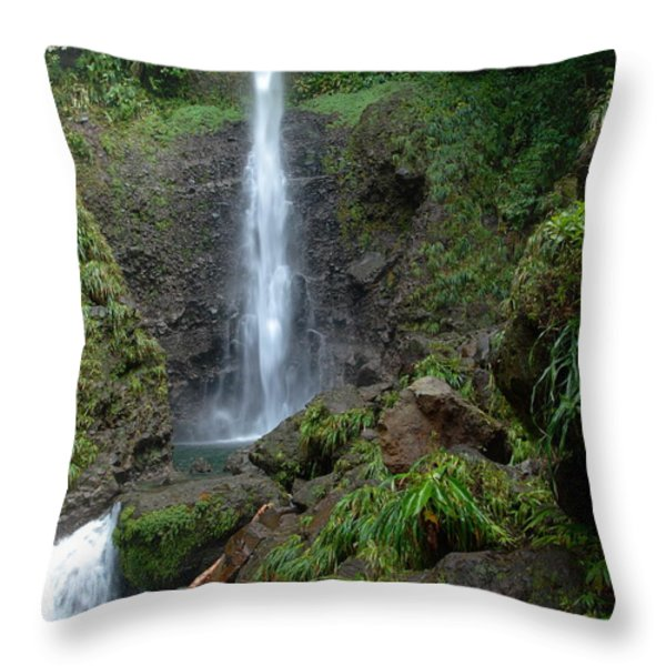 Middleham Waterfall in Dominica Throw Pillow by Tropical Ties Dominica