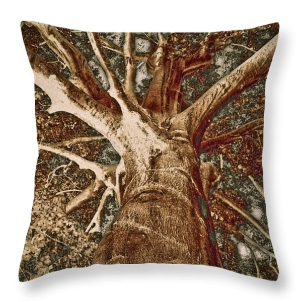 Throw Pillow featuring the painting Mighty Tree by Frank Tschakert