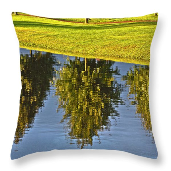Mirroring Trees Throw Pillow by Heiko Koehrer-Wagner