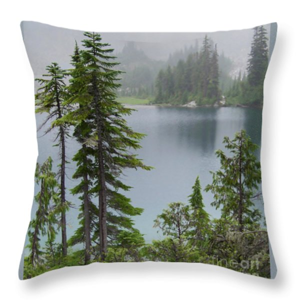 Mist At Snow Lake Throw Pillow by Charles Robinson