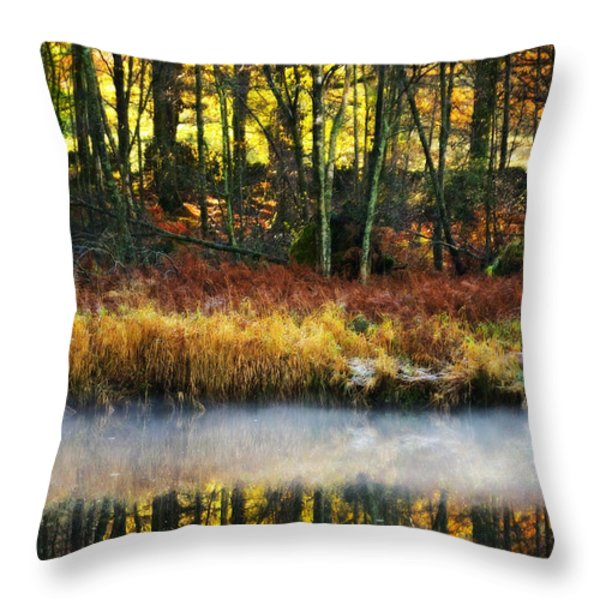 Mist On The Water Throw Pillow by Meirion Matthias