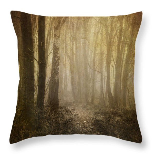 misty woodland path Throw Pillow by Meirion Matthias