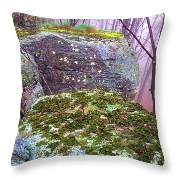 Misty Woodland Scenic Throw Pillow by Thomas R Fletcher