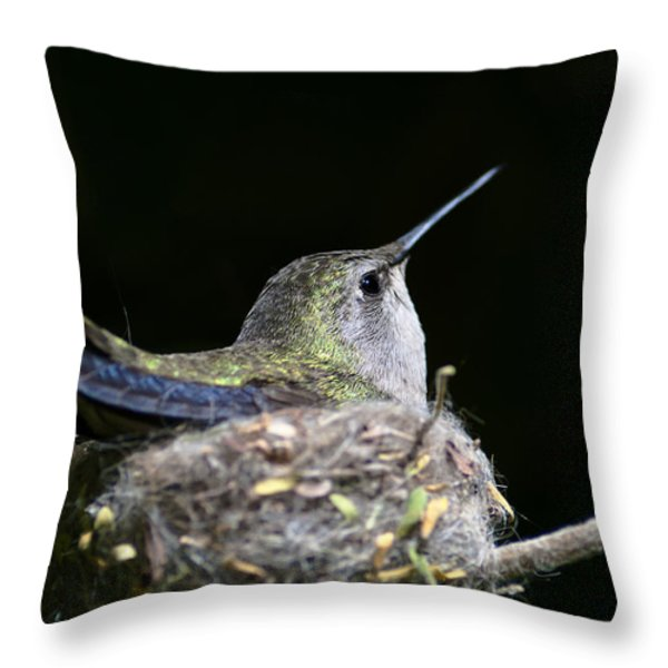 Mom Throw Pillow by Mike Herdering