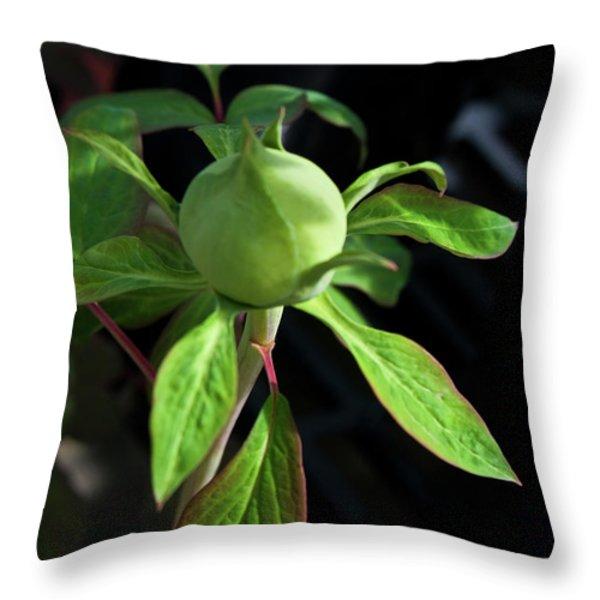 Monstrous Plant Bud Throw Pillow by Douglas Barnett