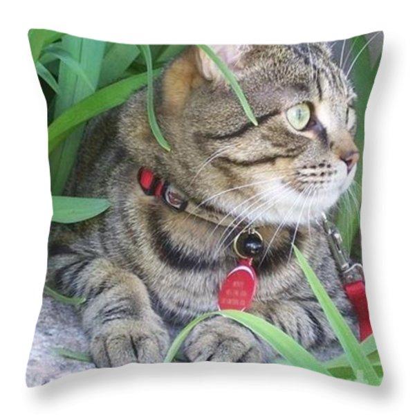 Monty in the garden Throw Pillow by Jolanta Anna Karolska