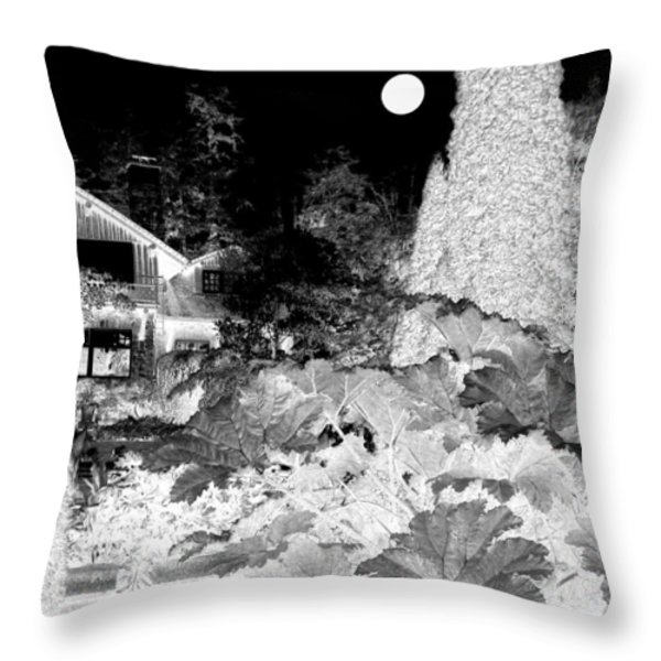 Moon Over Stanley Park Throw Pillow by Will Borden