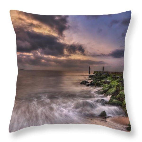 Morning Glory Throw Pillow by Evelina Kremsdorf