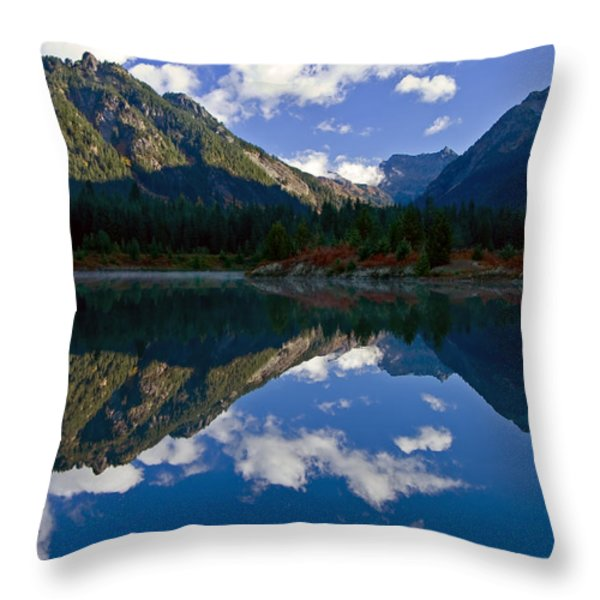 Morning Musings Throw Pillow by Mike  Dawson