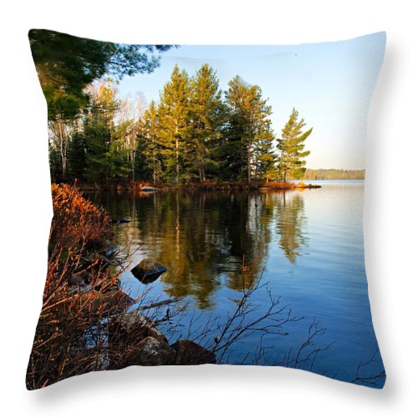 Morning On Chad Lake 4 Throw Pillow by Larry Ricker