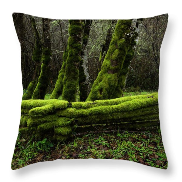 Mossy fence 3 Throw Pillow by Bob Christopher