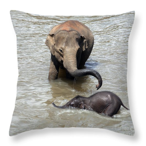 Mother and baby Throw Pillow by Jane Rix