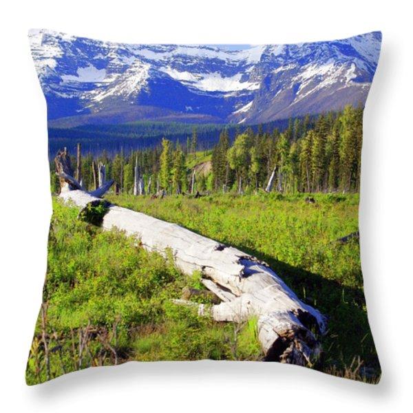 Mountain Splendor Throw Pillow by Marty Koch