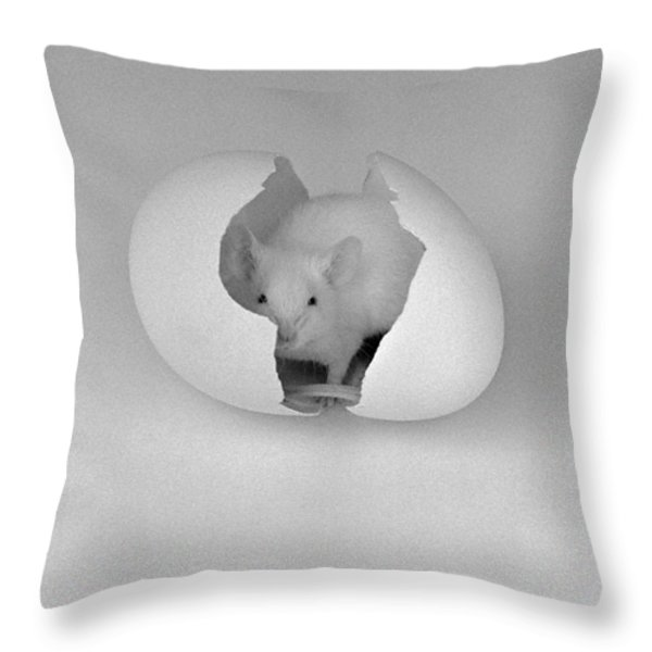 Mouse House Throw Pillow by Michael Swanson