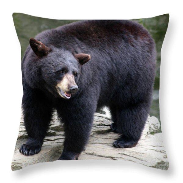 Mr Bear Throw Pillow by Karol Livote
