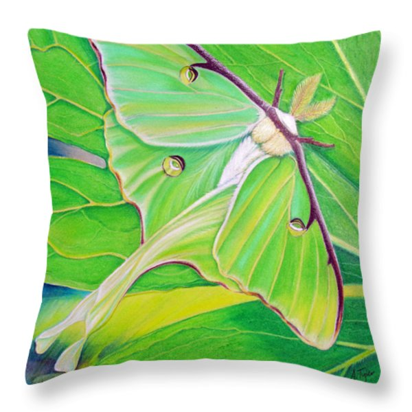 Must Be Dreaming Throw Pillow by Amy Tyler