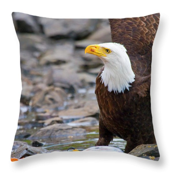 My Dinner Throw Pillow by Mike  Dawson