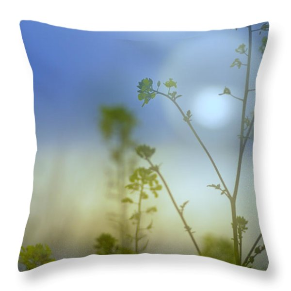 Mysterious Forest At Dusk Blue Throw Pillow by Guido Montanes Castillo