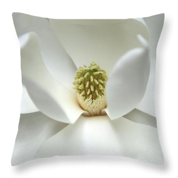 Mysteriously Throw Pillow by Amanda Barcon