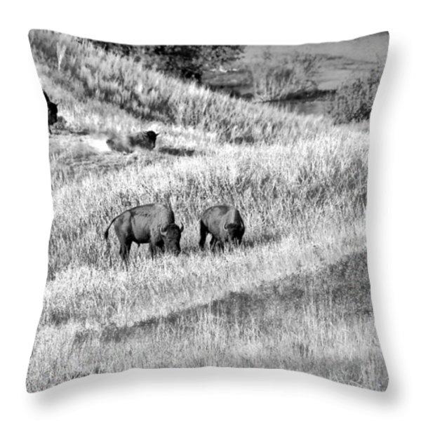 National Bison Range Wildlife Refuge Mt Usa Throw Pillow by Christine Till
