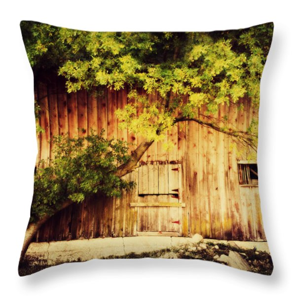 Natures Awning Throw Pillow by Julie Hamilton