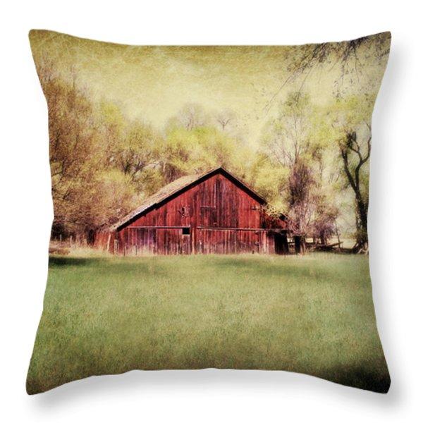 Nebraska Barn Throw Pillow by Julie Hamilton