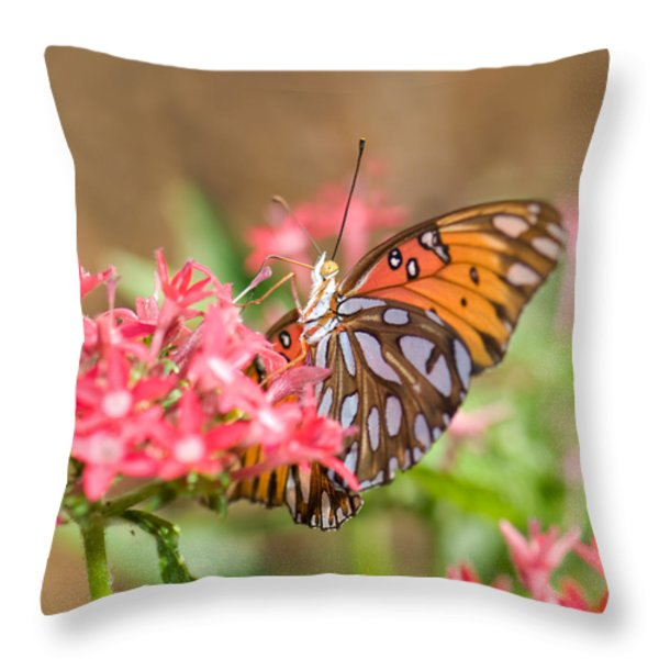 Nectaring Throw Pillow by Betty LaRue