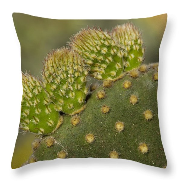 New Growth Throw Pillow by Kelley King