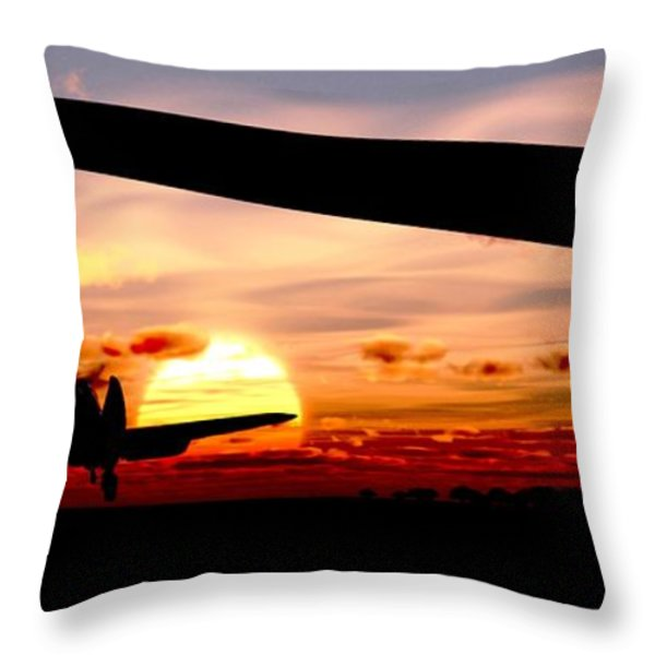 Night Hawks Throw Pillow by Richard Rizzo