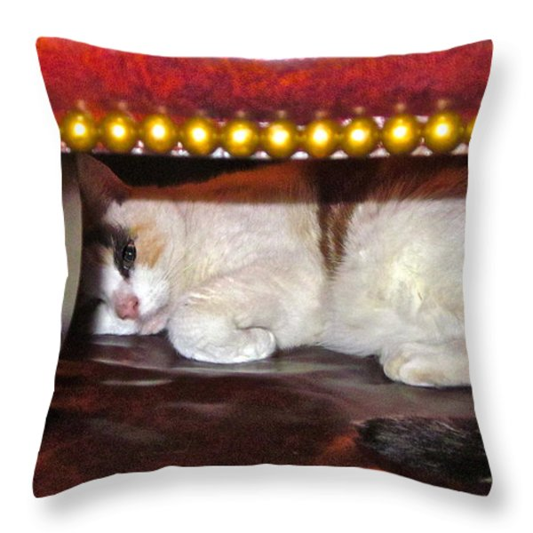 No Cameras Please Throw Pillow by Gwyn Newcombe