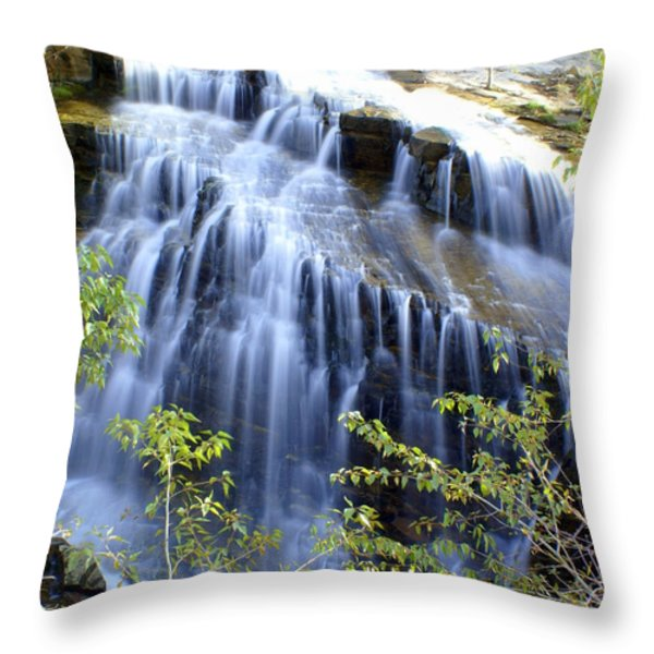 Northfork Falls Throw Pillow by Marty Koch