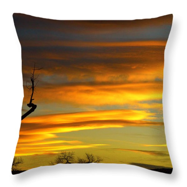 November Sunset Throw Pillow by James BO  Insogna