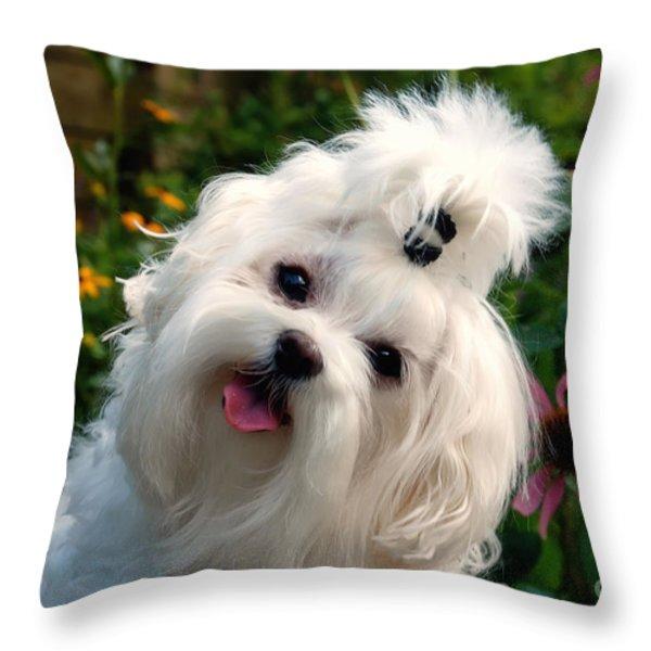 Nuttin' But Love Throw Pillow by Lois Bryan
