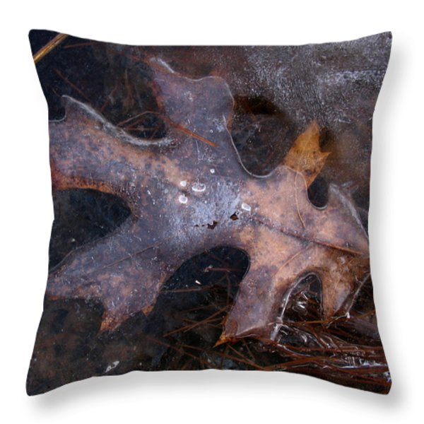 Oak Preservation Throw Pillow by Adam Long
