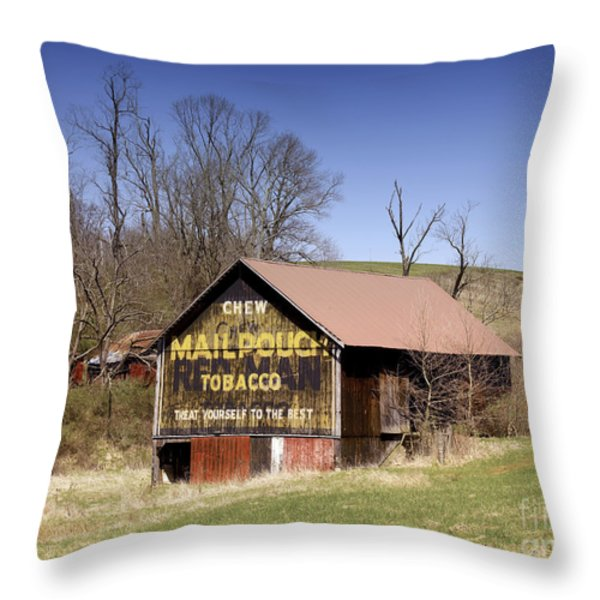 Ohio: Barn, 2009 Throw Pillow by Granger