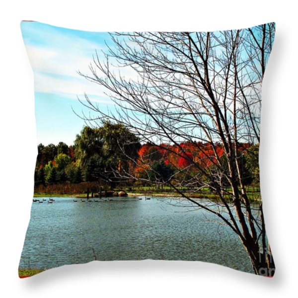 Ohio Duck Pond Throw Pillow by Joan  Minchak
