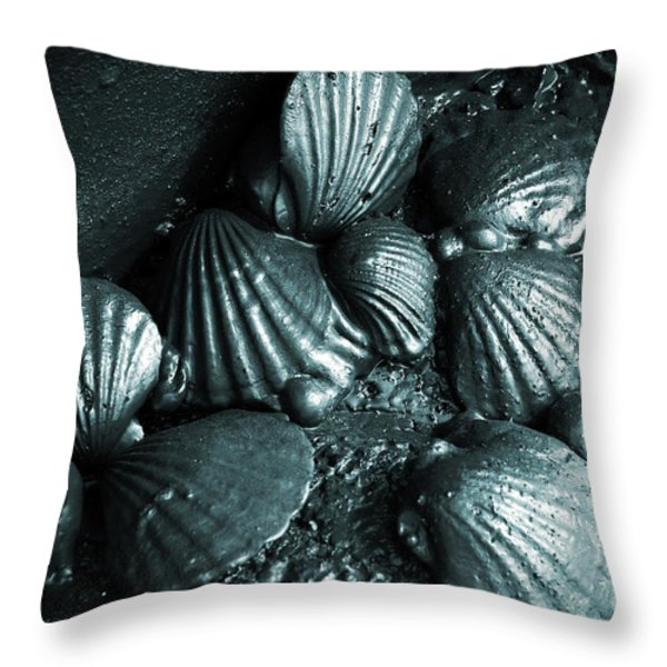 Oil Spill Throw Pillow by Carlos Caetano