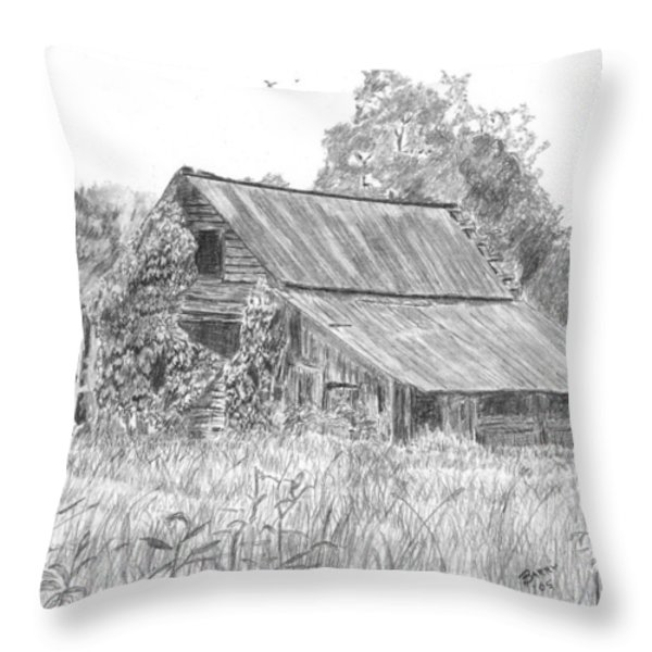 Old Barn 4 Throw Pillow by Barry Jones