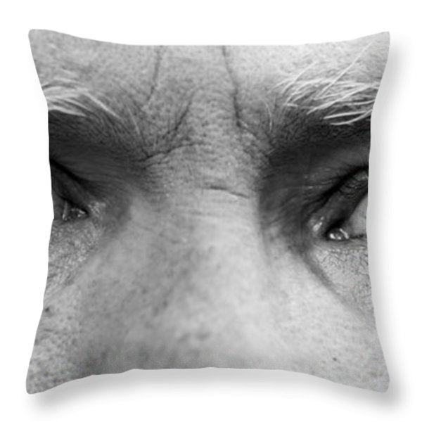Old Blue Eyes Throw Pillow by James BO  Insogna