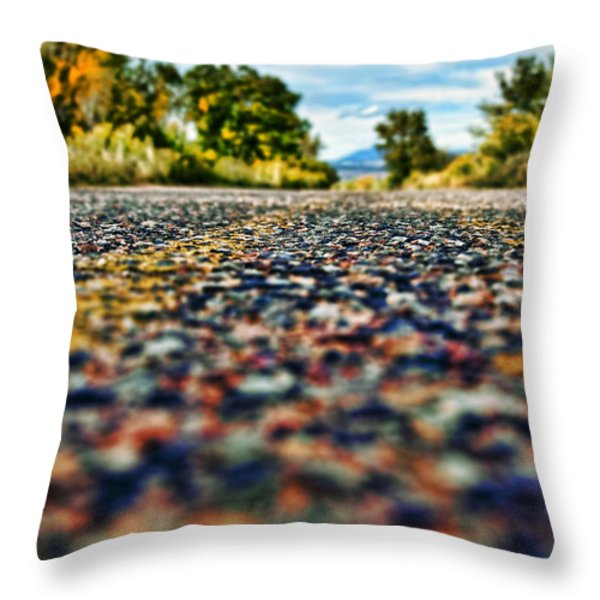Old Country Road Throw Pillow by Ray Laskowitz - Printscapes
