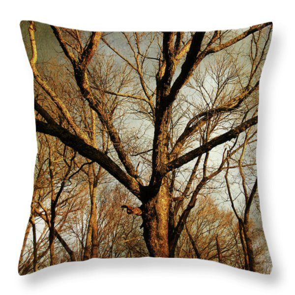 Old Faithful Throw Pillow by Amy Tyler