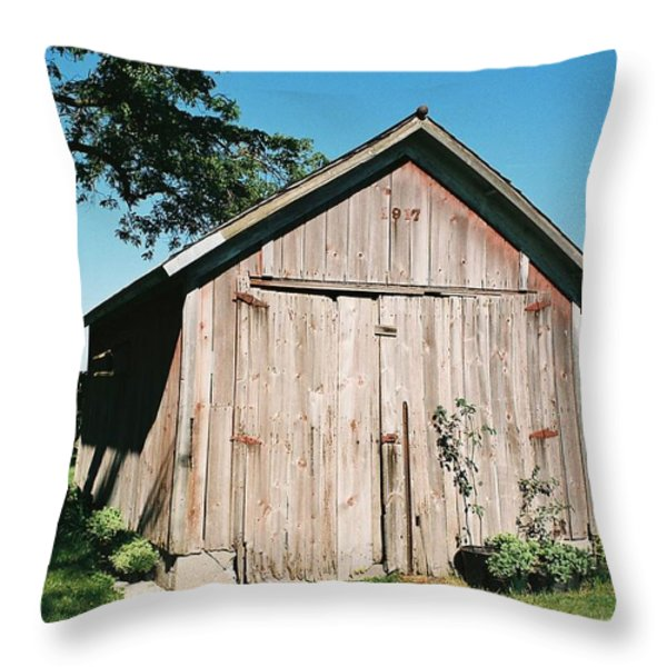 Old Shed Throw Pillow by Lauri Novak