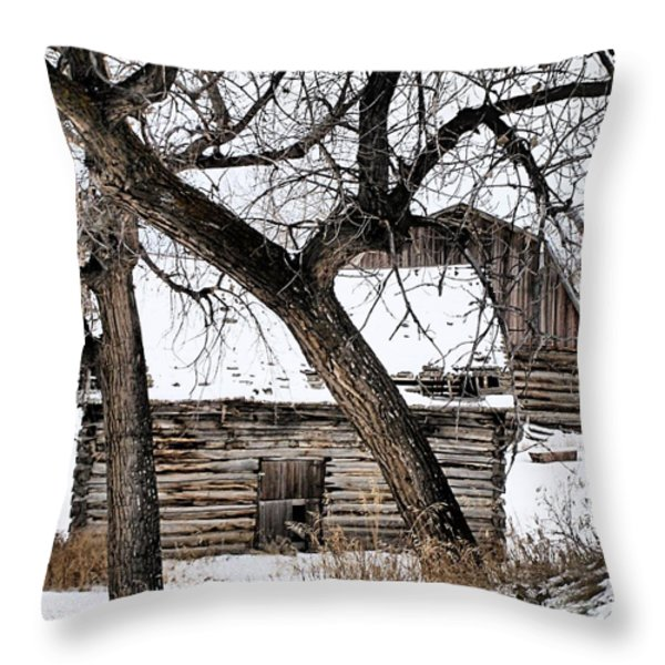 Old Ulm Barn Throw Pillow by Susan Kinney