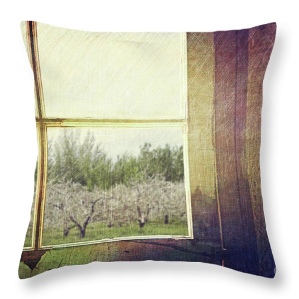 Old window looking out to apple orchard Throw Pillow by Sandra Cunningham
