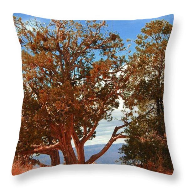 On The Edge Throw Pillow by Kathleen Struckle