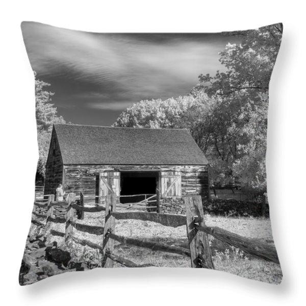 On the farm Throw Pillow by Joann Vitali