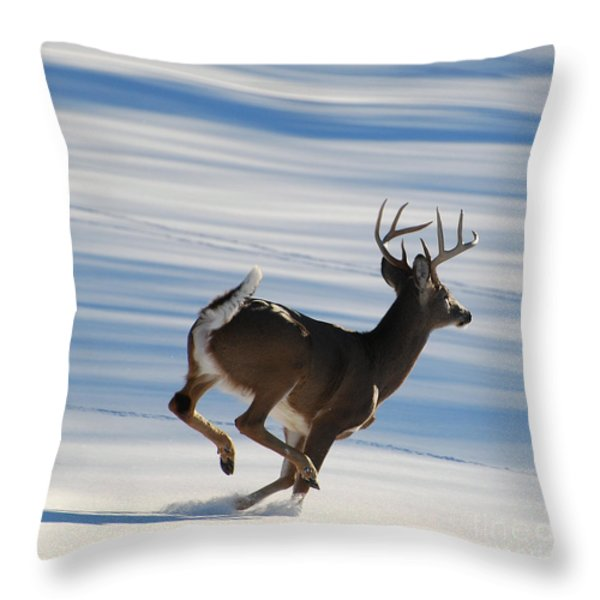 On the Run Throw Pillow by Todd Hostetter