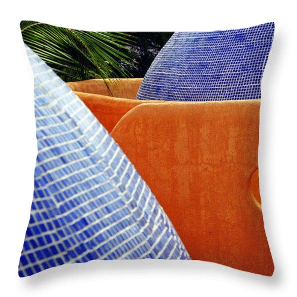 Orange Crush 3 Throw Pillow by Skip Hunt