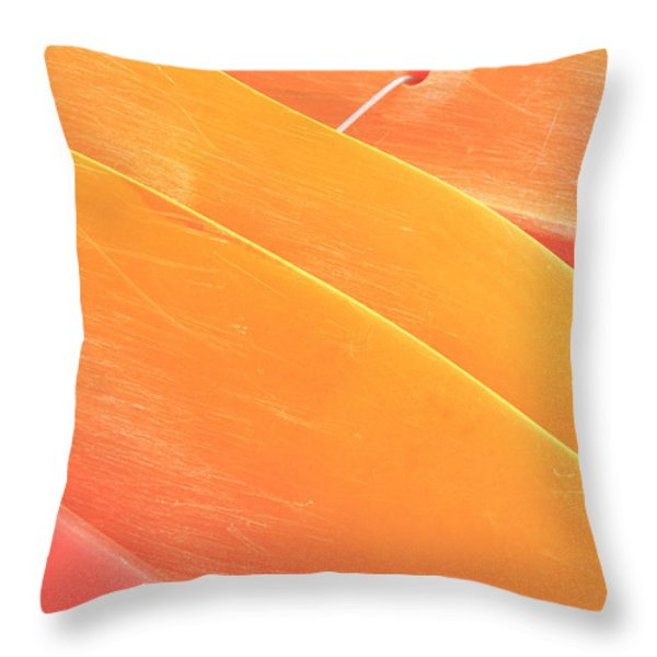 Orange Kayaks Throw Pillow by Brandon Tabiolo - Printscapes